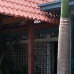 Villas Monte Coqui