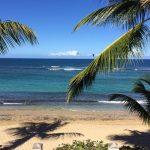 Playa Shacks