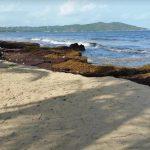 El Negro Beach