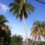 Playa Inches