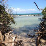 Playa de Los Machos