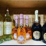 Tinto Wine Shop