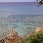 Playa Wishing Well