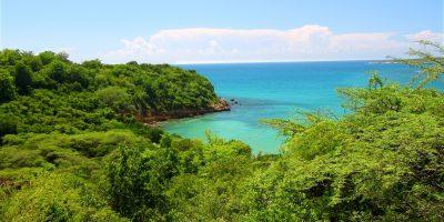 Bosque Estatal De Guánica