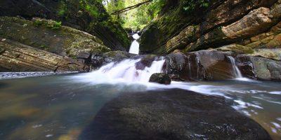 Bosque_Nacional_El_Yunque_0